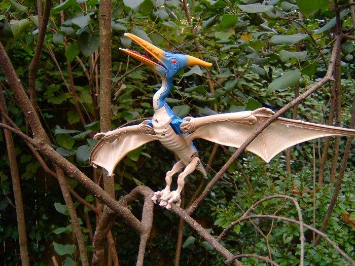 pteranodon3.jpg